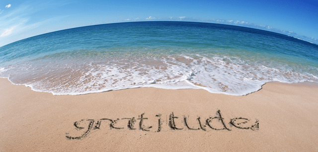 Living a Life of Gratitude Will Result in Success