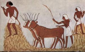 7000 BC
