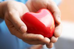 Heart Based Career Decision