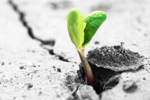 Resilience is key o a growth mind set