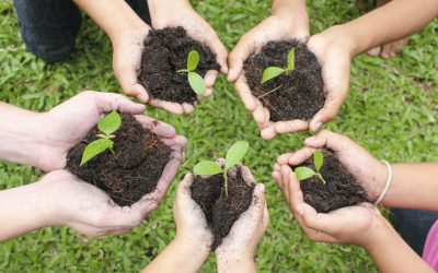Why networking is like gardening