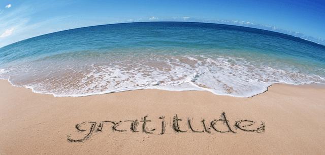 daily gratiude