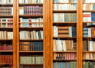 Bookshelf bias – even with AI